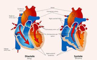 Зависит артериальное давление от возраста