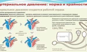 Артериальное давление норма и отклонения схема