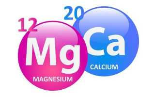 Можно ли пить одновременно кальций и магний