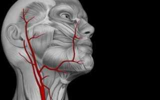 Задняя трифуркация внутренней сонной артерии
