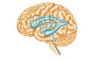 Жидкость в головном мозге у взрослого причины