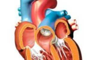 Диффузные изменения миокарда левого желудочка чем грозит