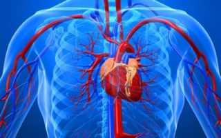 Ибс атеросклеротический кардиосклероз мкб